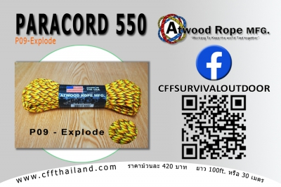 Paracord 550 (P09-Explode)
