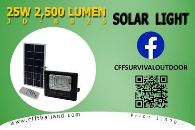 Solar Light 25W 2,500 Lumen